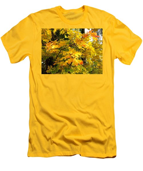 Men's T-Shirt (Slim Fit) featuring the photograph Brilliant Maple Leaves by Will Borden
