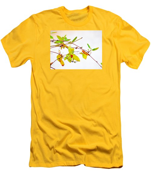 Green Twigs And Leaves Men's T-Shirt (Slim Fit) by Craig Walters