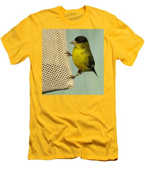 Male Goldfinch On Sock Feeder Men's T-Shirt (Athletic Fit)