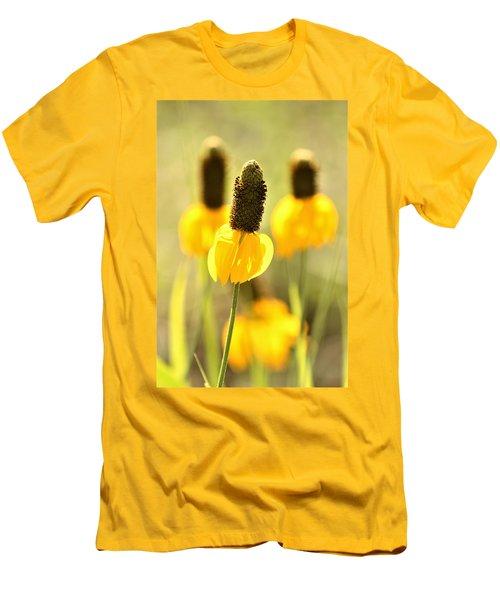 Prairie Coneflower In Morning Light Men's T-Shirt (Athletic Fit)