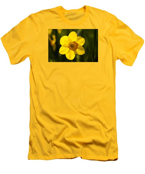 Projecting The Sun Men's T-Shirt (Slim Fit) by Dan Hefle