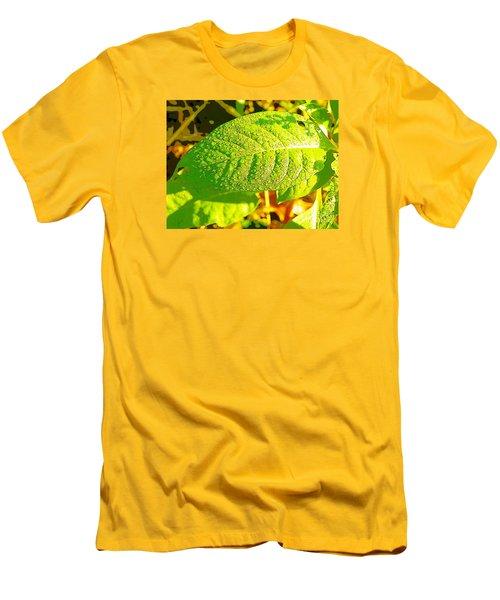 Rain On Leaf Men's T-Shirt (Slim Fit) by Craig Walters