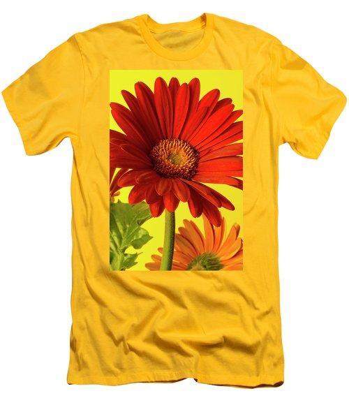 Red Gerbera Daisy 2 Men's T-Shirt (Slim Fit) by Richard Rizzo