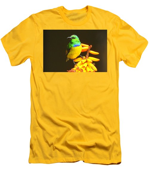 Sunbird Men's T-Shirt (Slim Fit) by Betty-Anne McDonald