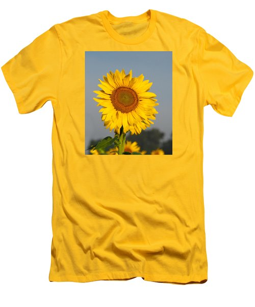Sunflower At Attention Men's T-Shirt (Athletic Fit)