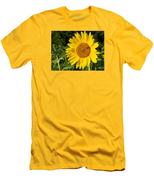 Sunflower With Bee Men's T-Shirt (Athletic Fit)