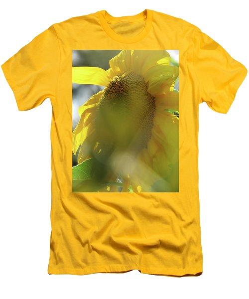 Sunshine In The Garden 6 Men's T-Shirt (Athletic Fit)