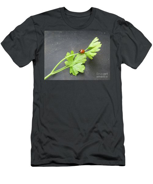 Ladybug On A Parsley Stalk 1 Men's T-Shirt (Athletic Fit)