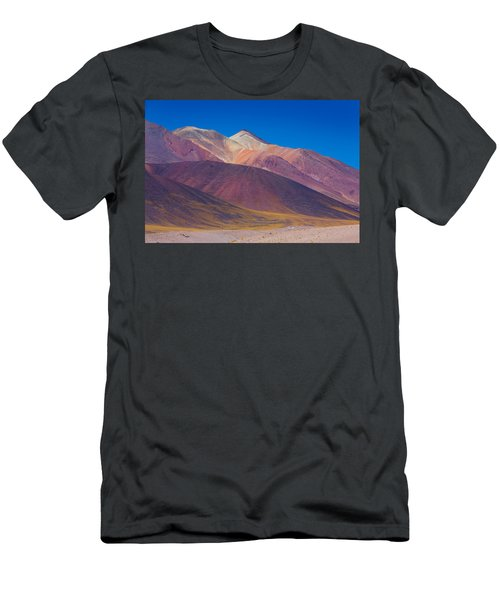 Painted Atacama Men's T-Shirt (Athletic Fit)