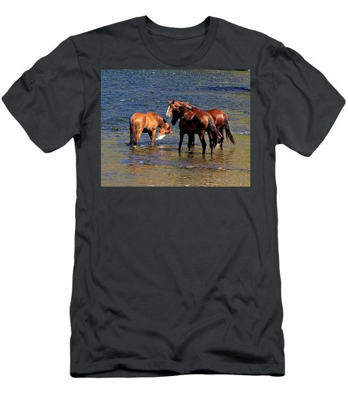 Arizona Wild Horses On The Salt River Men's T-Shirt (Athletic Fit)