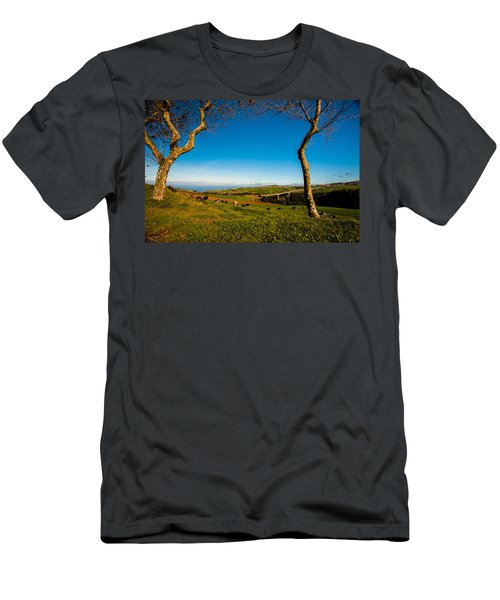 Between Two Trees Men's T-Shirt (Athletic Fit)