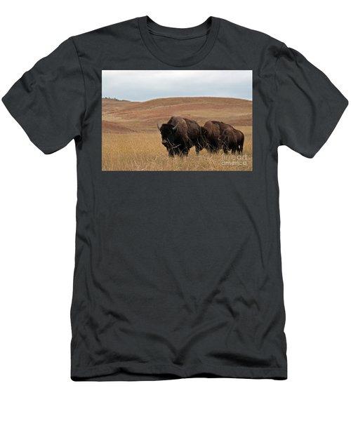 Bison, South Dakota Men's T-Shirt (Athletic Fit)