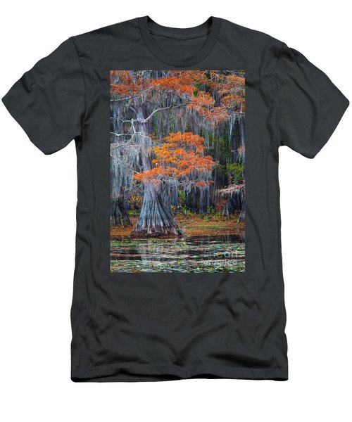 Caddo Lake Autumn Men's T-Shirt (Athletic Fit)