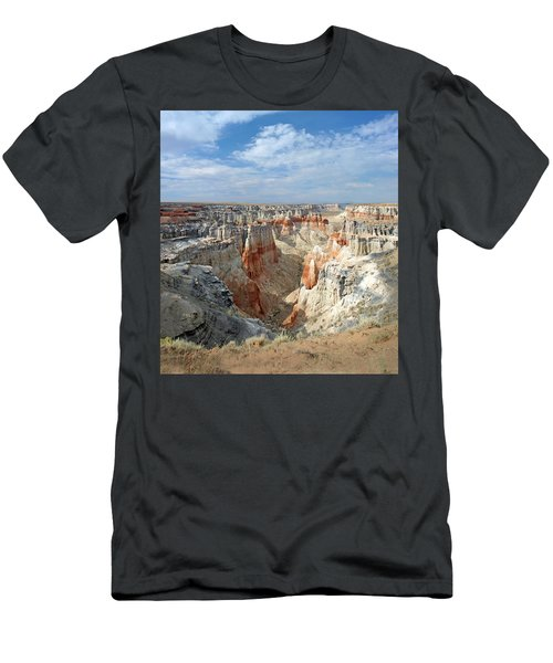 Coal Mine Mesa 14 Men's T-Shirt (Athletic Fit)