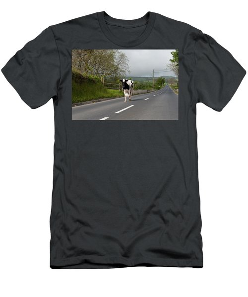 Cow Walks Along Country Road Men's T-Shirt (Athletic Fit)