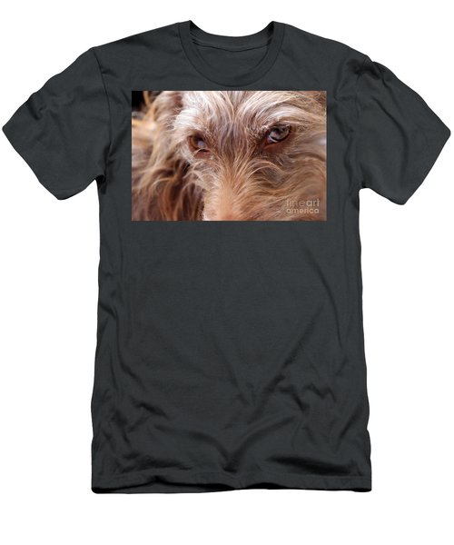 Dog Stare Men's T-Shirt (Athletic Fit)