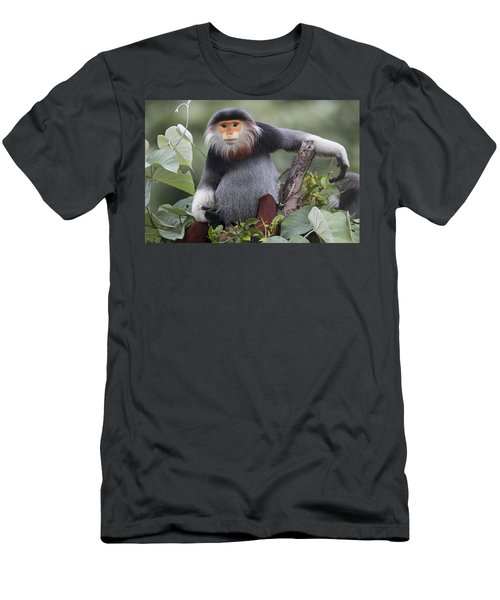 Douc Langur Male Vietnam Men's T-Shirt (Athletic Fit)