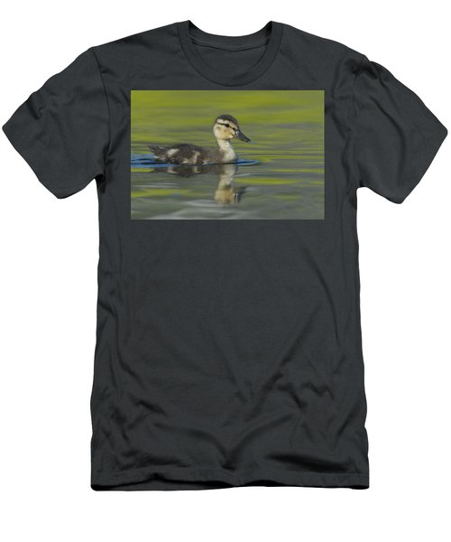 Mallard Duck Swimming In Marsh Pond Men's T-Shirt (Athletic Fit)