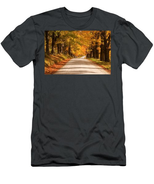 Maple Tree Canopy Men's T-Shirt (Athletic Fit)