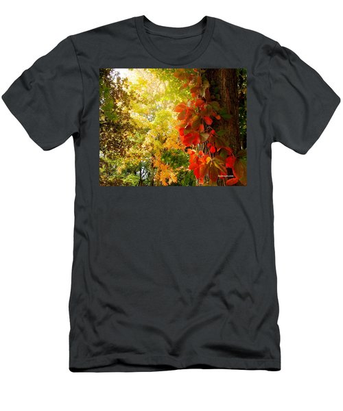 Minnesota Jungle Men's T-Shirt (Athletic Fit)