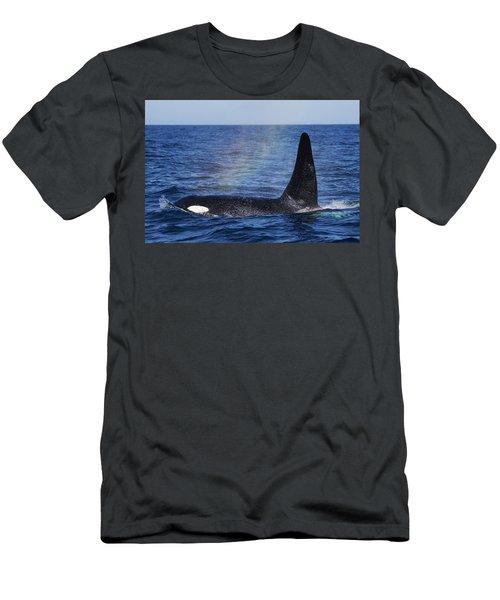 Orca Surfacing Hokkaido Japan Men's T-Shirt (Athletic Fit)