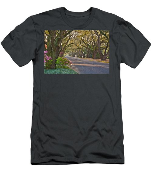 South Boundary In Spring Men's T-Shirt (Athletic Fit)