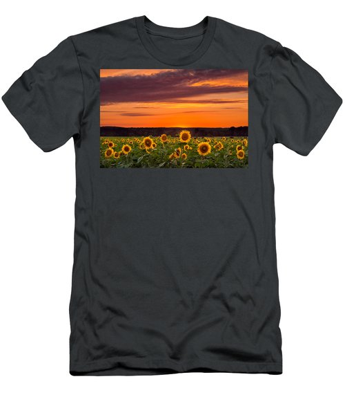 Sunset Over Sunflowers Men's T-Shirt (Athletic Fit)