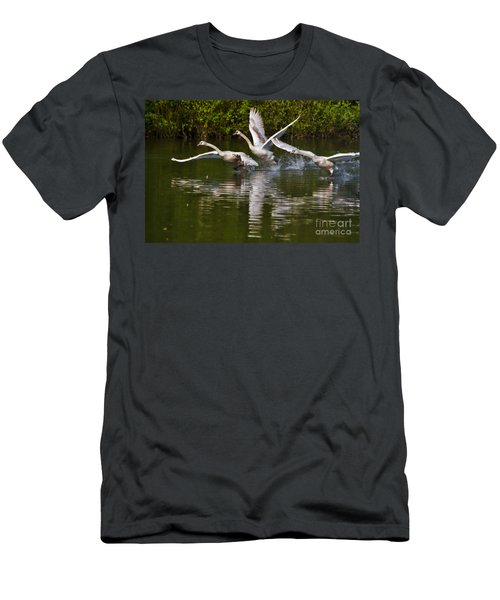 Swan Take-off Men's T-Shirt (Athletic Fit)