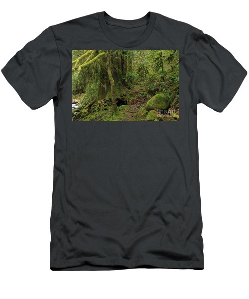 Temperate Rainforest Of Goldstream Park Men's T-Shirt (Athletic Fit)