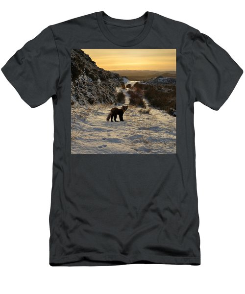 The Pine Marten's Path Men's T-Shirt (Athletic Fit)