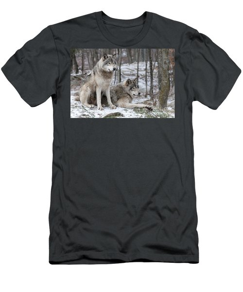 Timber Wolf Pair In Forest Men's T-Shirt (Athletic Fit)