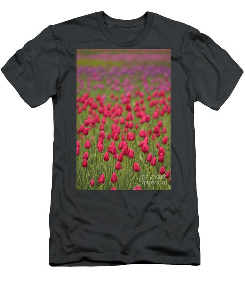 Tulip Beds Forever Men's T-Shirt (Athletic Fit)