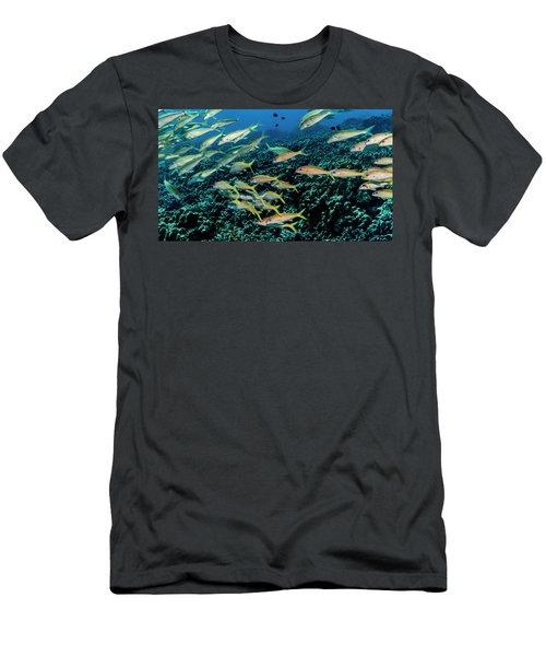 Yellowfin Goatfish  Mulloidichthys Men's T-Shirt (Athletic Fit)
