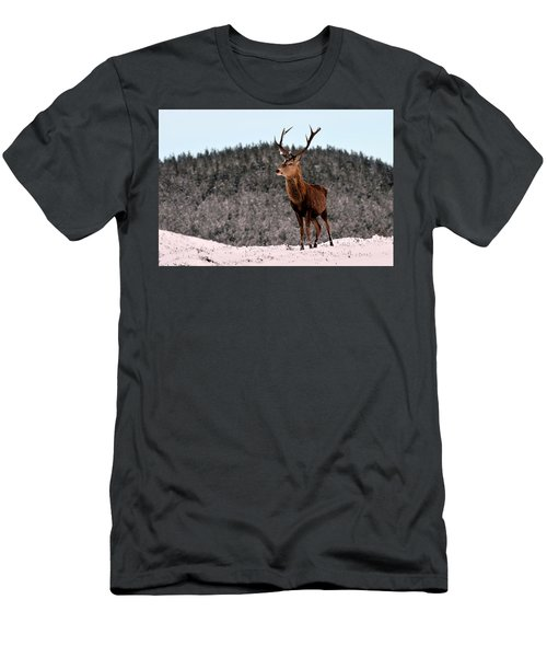 Red Deer Stag Men's T-Shirt (Athletic Fit)