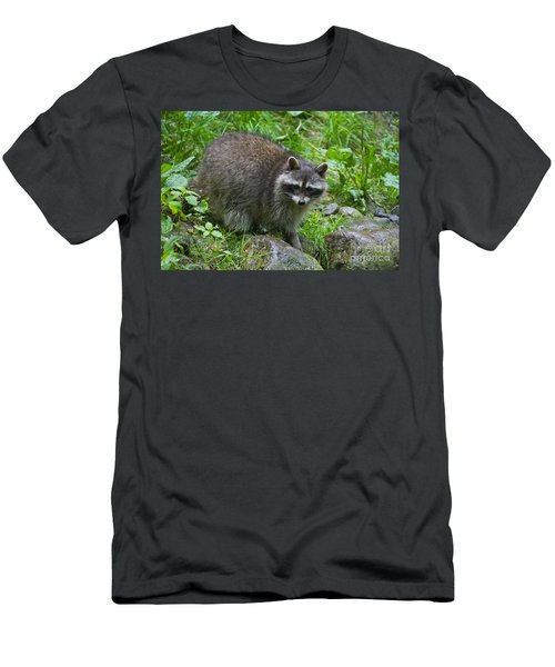 Men's T-Shirt (Slim Fit) featuring the photograph 130201p045 by Arterra Picture Library