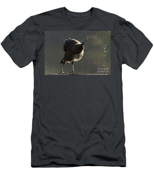 Boat Tailed Grackle Men's T-Shirt (Athletic Fit)