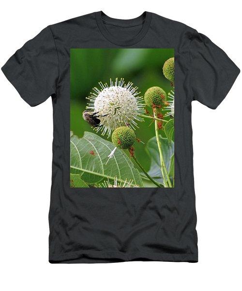 Bumbler Men's T-Shirt (Athletic Fit)