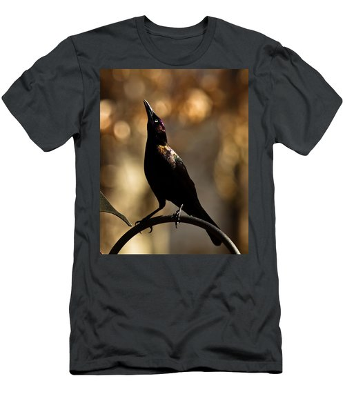 Common Grackle Men's T-Shirt (Athletic Fit)