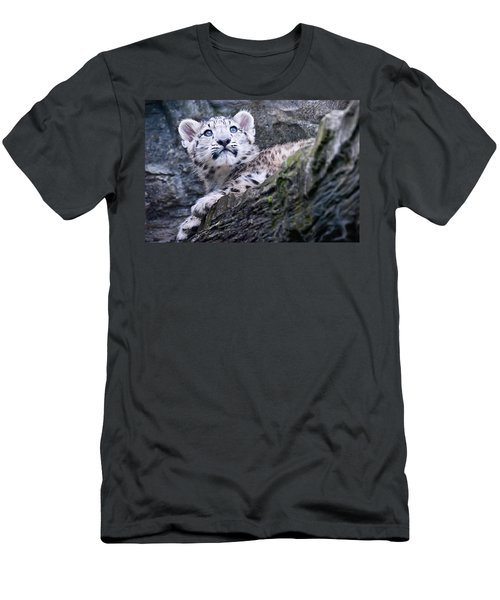 Snow Leopard Cub Men's T-Shirt (Athletic Fit)