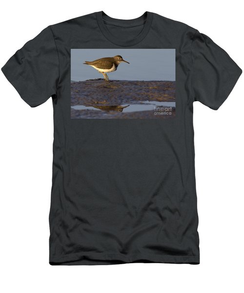 Spotted Sandpiper Reflection Men's T-Shirt (Athletic Fit)
