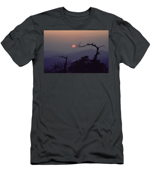 Tree And Sun From Mt Scott Men's T-Shirt (Athletic Fit)