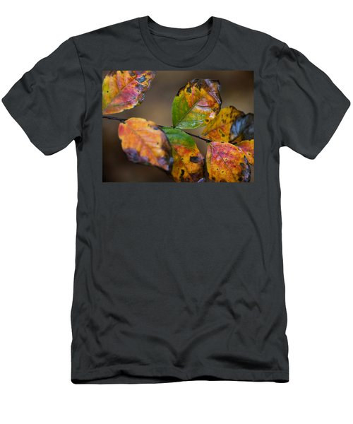 Turning Leaves Men's T-Shirt (Slim Fit) by Stephen Anderson