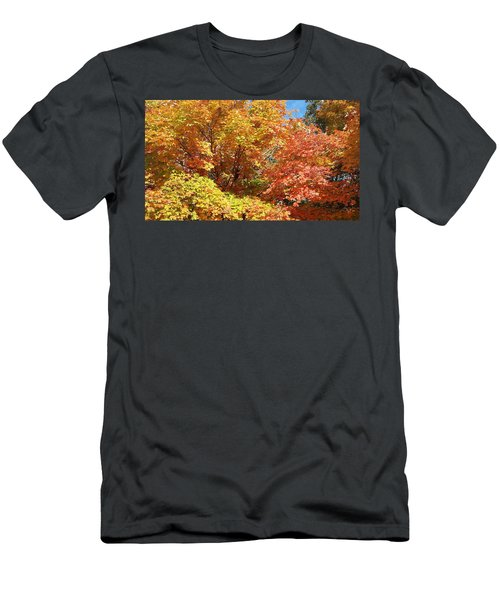 Fall Explosion Of Color Men's T-Shirt (Athletic Fit)