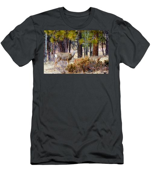 Mule Deer Men's T-Shirt (Athletic Fit)