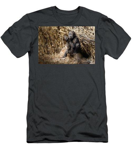 Quiet Juvenile Gorilla Men's T-Shirt (Athletic Fit)
