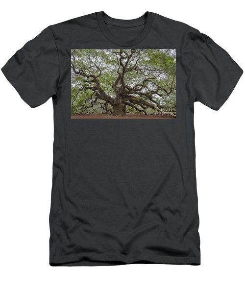 Sc Angel Oak Tree Men's T-Shirt (Athletic Fit)