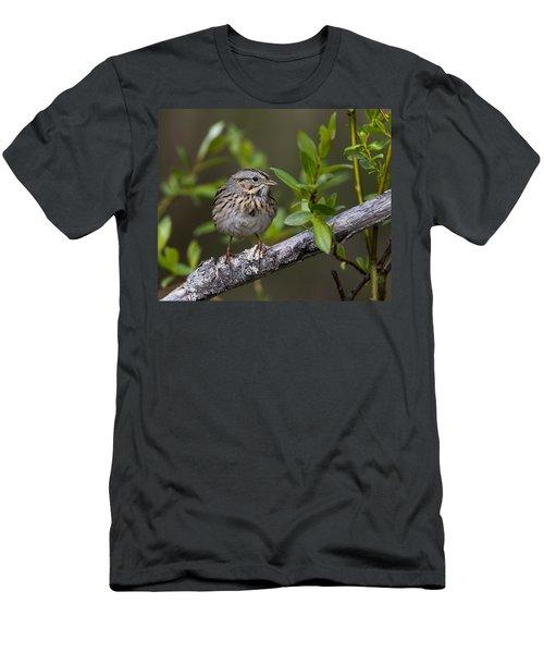 Lincolns Sparrow Men's T-Shirt (Athletic Fit)