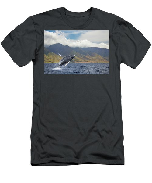 A Breaching Humpback Whale  Megaptera Men's T-Shirt (Athletic Fit)