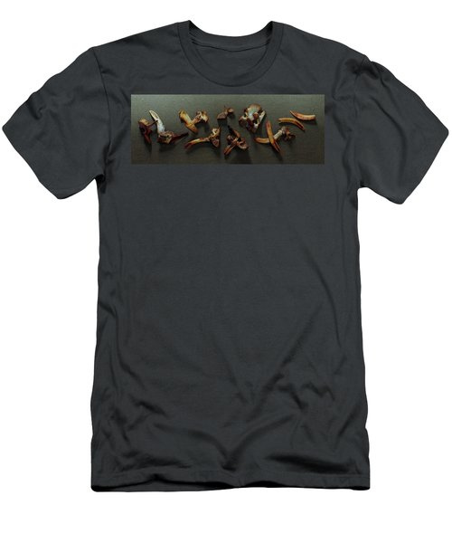 A Cluster Of Sheep Bones Men's T-Shirt (Athletic Fit)