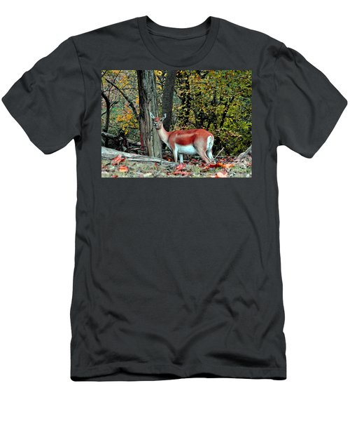 A Deer Look Men's T-Shirt (Athletic Fit)
